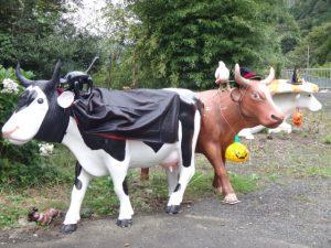 牛たちがコスプレで歓迎してくれました。