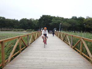 山中湖湖畔と花の都公園はサイクリングロードで繋がっています。