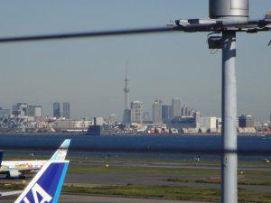 天気が良ければ東京スカイツリーも見えます