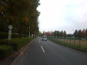 2008-11-08