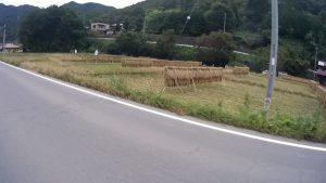 都留のほうは稲刈りが終わっていました。