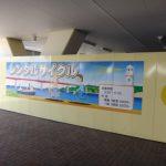 三崎漁港のレンタルサイクル